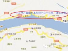 富硒水果有哪些?恩施硒都巴东县东壤口乡雷家坪椪柑