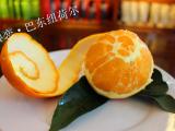 """脐橙产地巴东县东壤口乡""""雷家坪脐橙"""""""