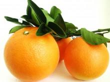 巴东脐橙 – 秘境巴东的峡江脐橙