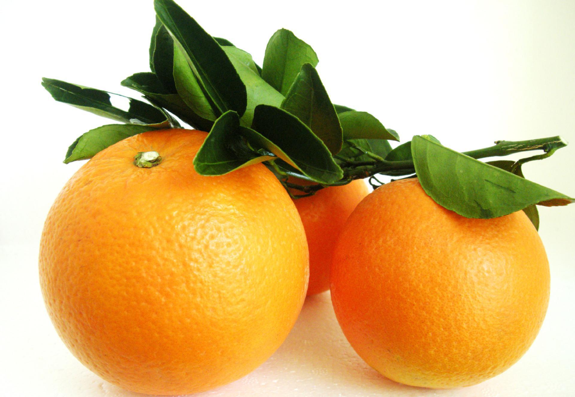 浓郁香甜的纽荷尔脐橙是脐橙中的上上品