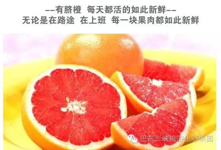 巴东三峡红肉脐橙